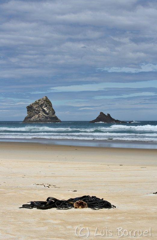 Sandfly beach3.jpg