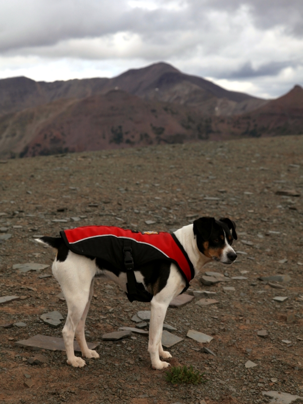 Kelly dressed to kill on Dead Horse Pass