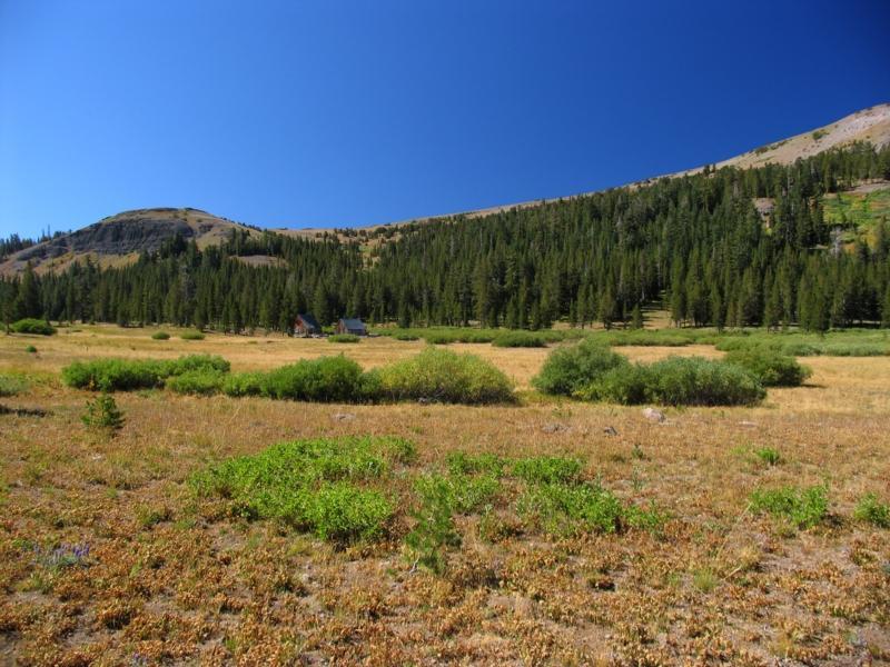 Meiss meadow homestead