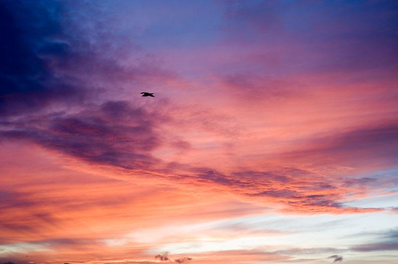 29th December 2012 <br> sudden skyburst