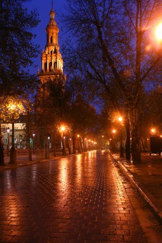 8136 Cobbles Plaza de Espana.jpg