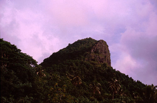 Escarpment and Rainforest