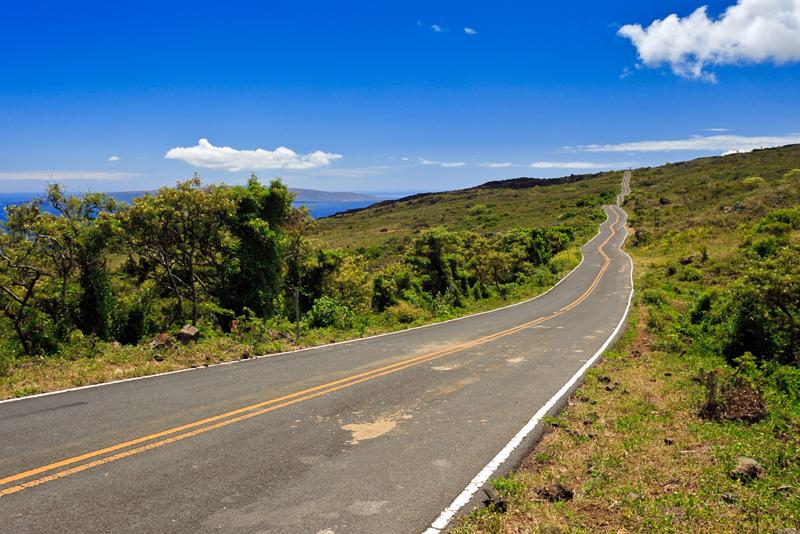 Winding Road to Hana 21658