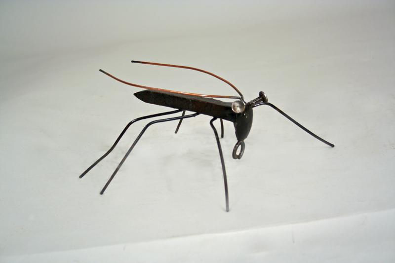 spike beetle