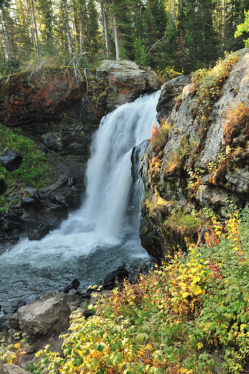 YS1_8596 Crawfish Creek Falls - Yellowstone