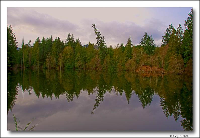 Lake reflections.