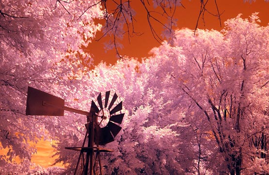 Windmill in Color IR