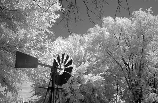 Windmill in B-W IR