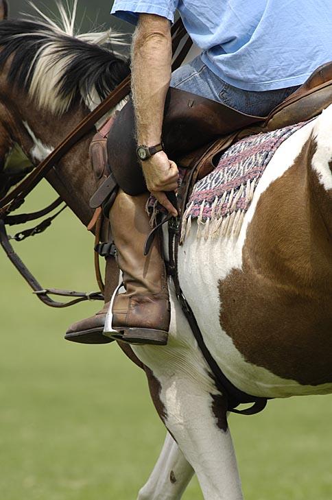 Saddle Adjustment