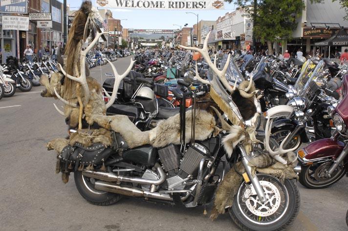 Elk & Hide Bike