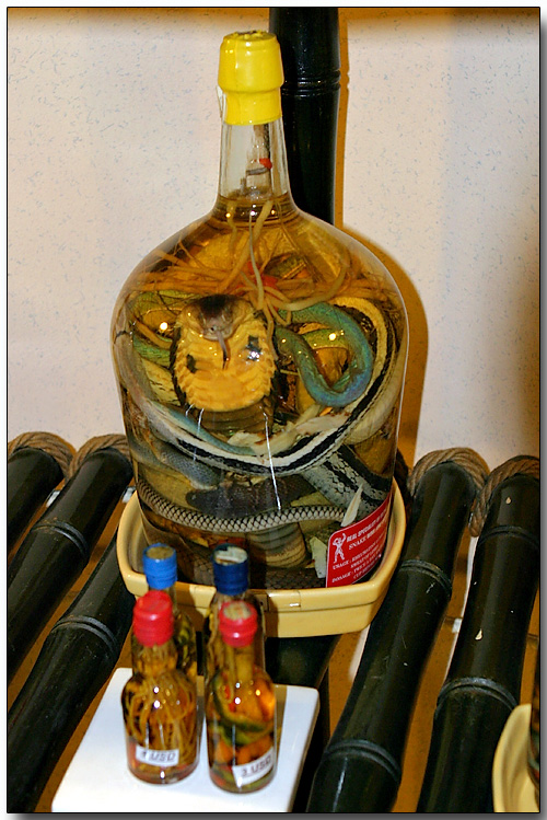 Snakes in a bottle
