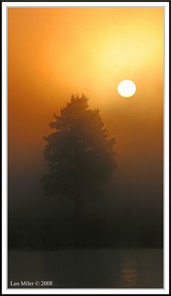 PC-IMG_5384CC framed.jpg