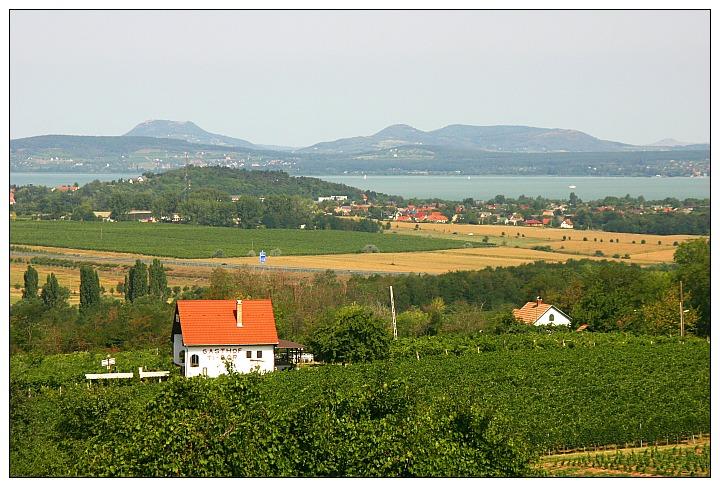 Kishegy view