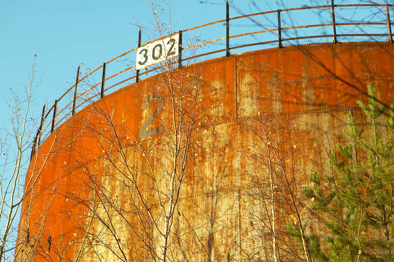 BF5T8674.jpg