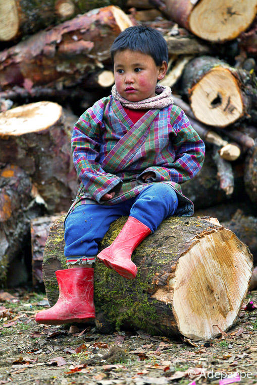 Little lumberjack