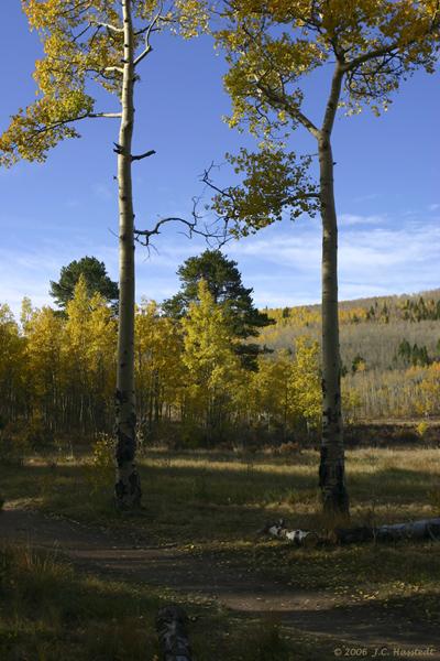 Colorado IMG_5379