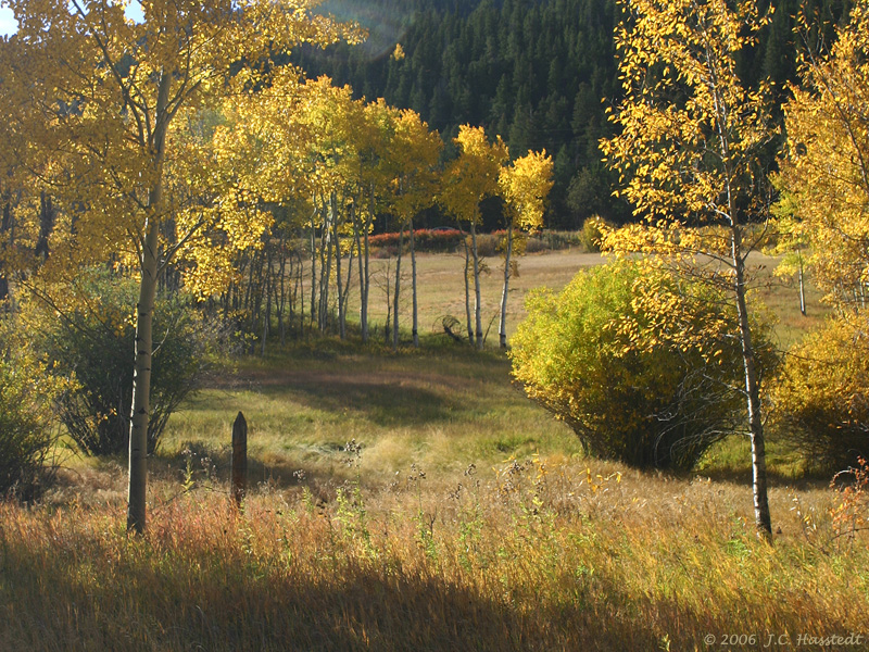 Colorado IMG_5387