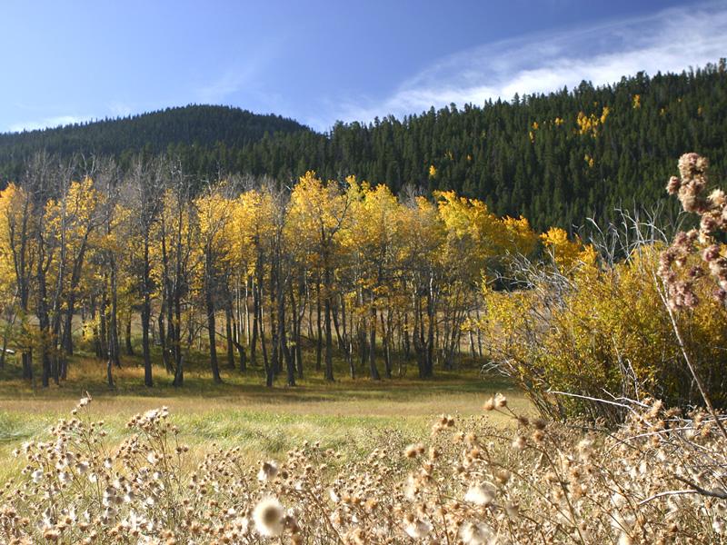 Colorado IMG_5389