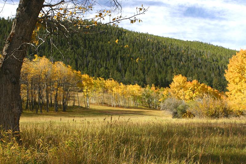 Colorado IMG_5390