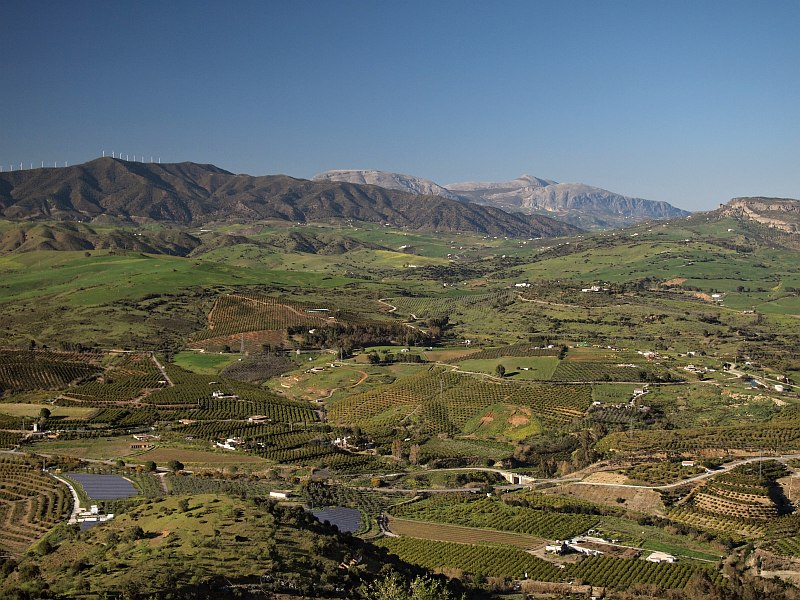 From Sierra de Gibralgalia