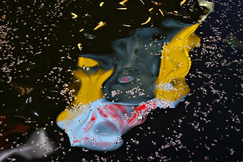 Reflected neon, Dotomburi