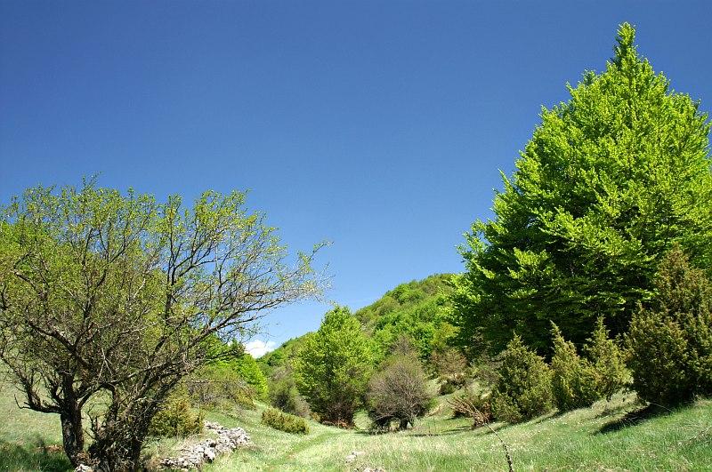 Galičica National Park