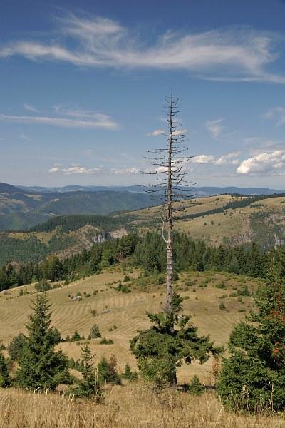 Bukovik Mountain