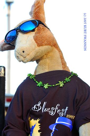 2007 DODGEVILLE BLUES FEST
