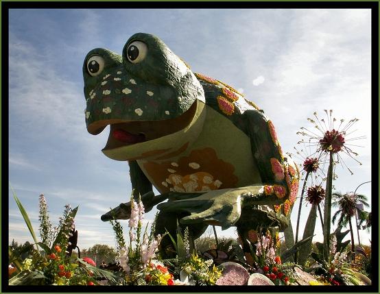 Enormous Froggie