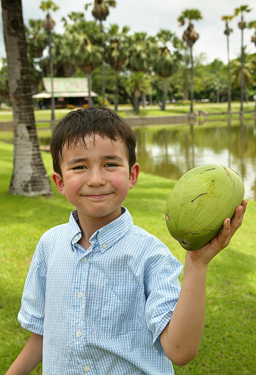 Coconut discovery
