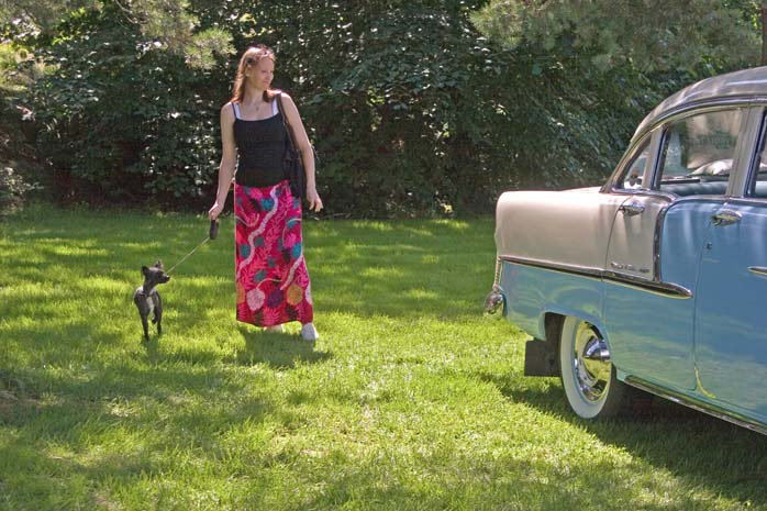 The Dog the Girl and the Vintage Car