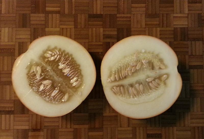 Tigger Melon Halves