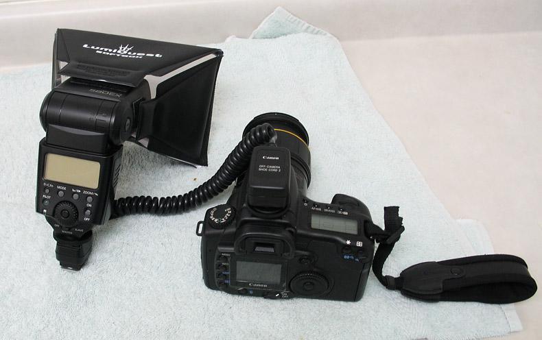 IMG_5427 OffCameraShoe Cord 2-Softbox