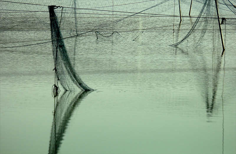 Fishermans Net.jpg