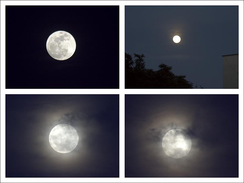 Full Moon Sequence.jpg