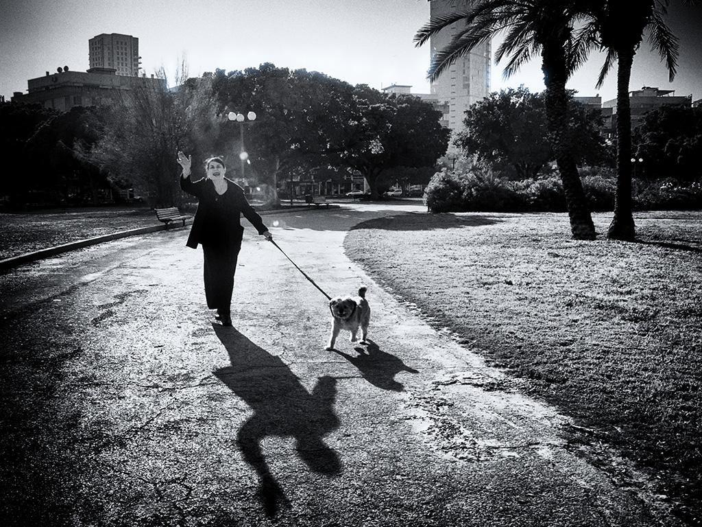 Shadow and Light 1.jpg