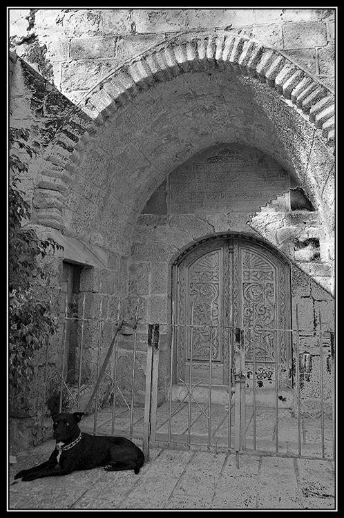 Old Jaffa.jpg