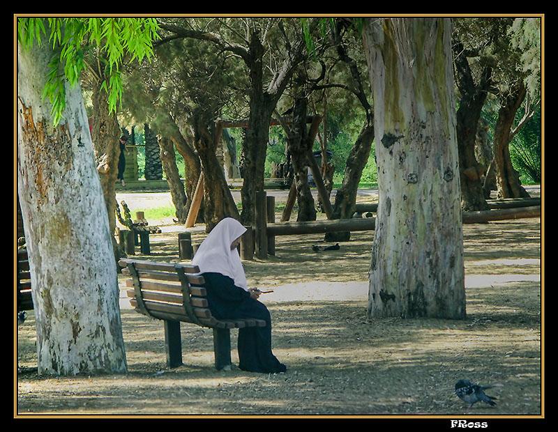 A Quiet Corner to Meditate.jpg