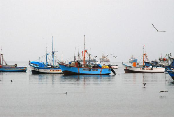 Paracas Harbor