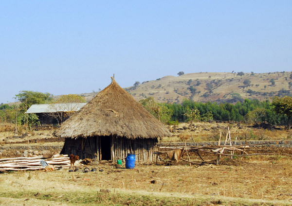 Thatched hut outside Bahir Dar