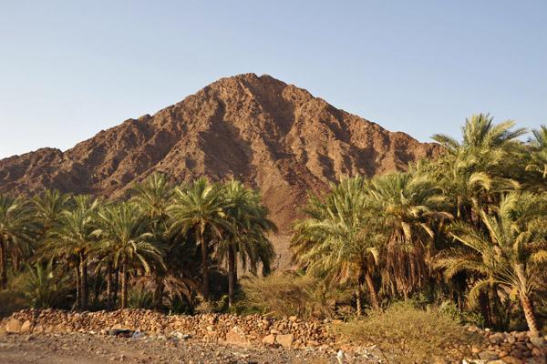 Driving along Wadi Hawasinah (near the hospital)