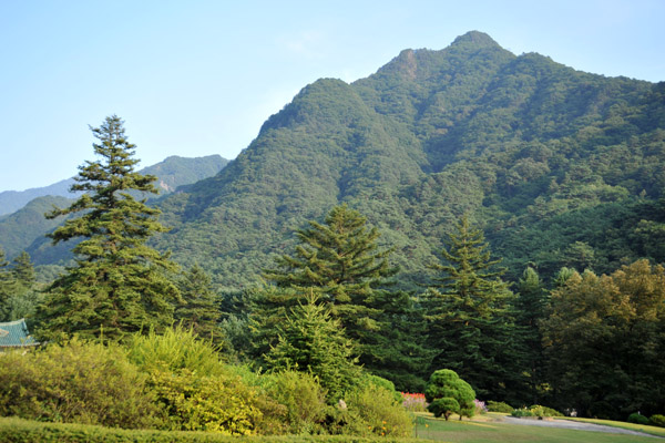 Tree covered mountains of the Myohyangan Nature Reserve