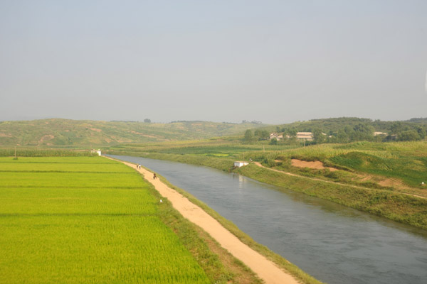 Canal and rice paddies, North Korea