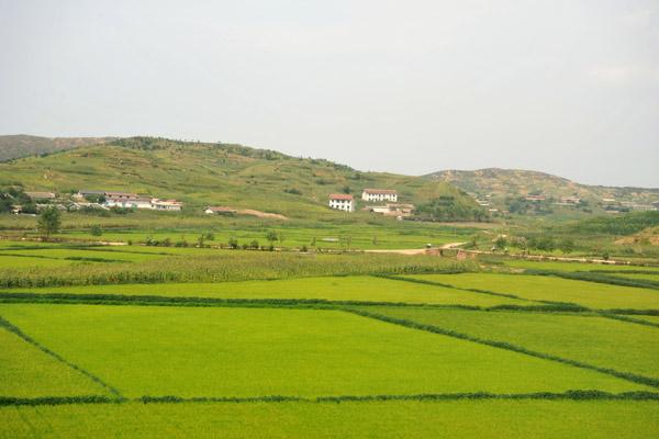 Agricultural landscape, North Korea