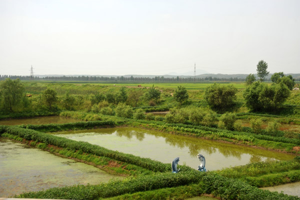 Fish Farm, North Korea