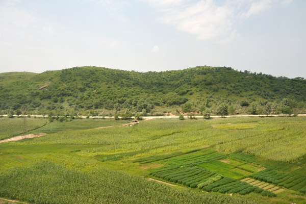 Green fields of mixed crops, South Phyongan Province, North Korea