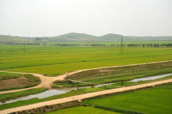 Pedestrian suspension bridge across an irrigation canal, South Phyongan Province, North Korea