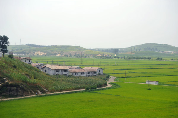 North Korea uses all available acreage for planting to help achieve self sufficiency in agriculture