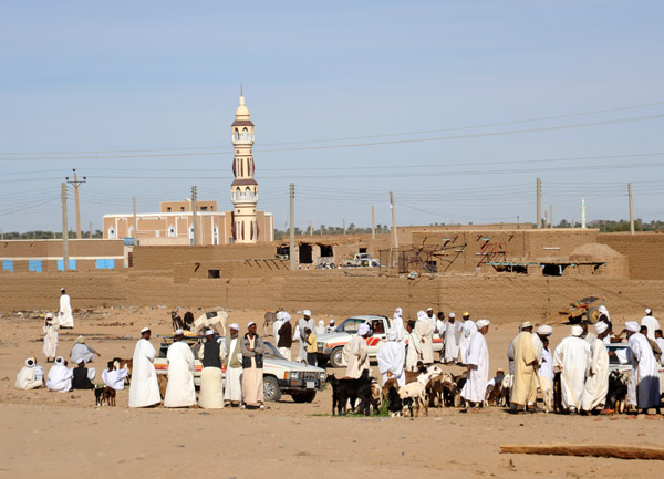 Small livestock market near El Daba