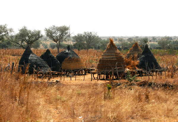 Yet another style of African granary, Niger